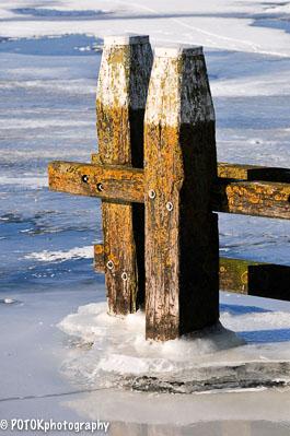 Winter-224.JPG