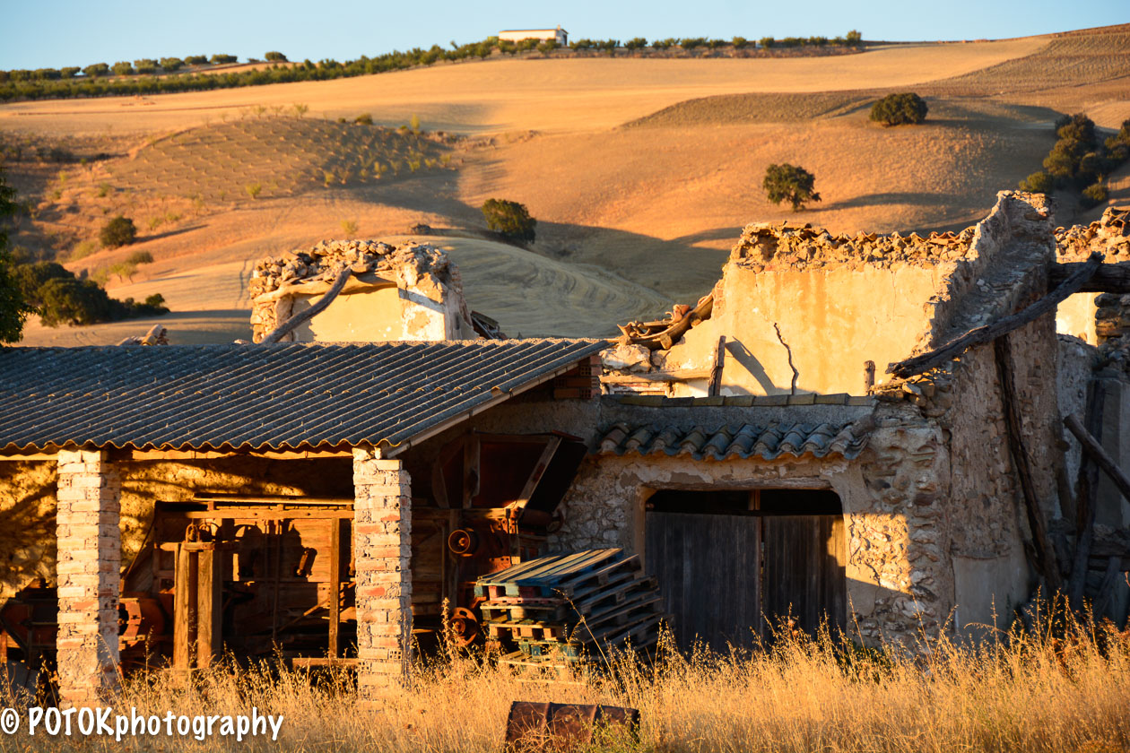 Abandoned-farm-1573.JPG