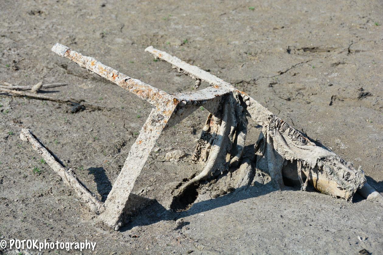 Beachcombing-1157.JPG