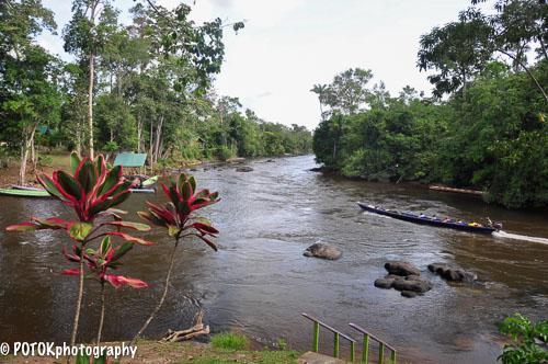 Suriname-Anaula-0098.JPG