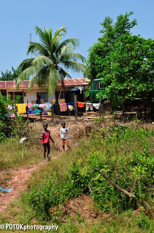 Suriname-Brownsberg-1525.JPG
